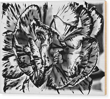 Either...or Wood Print by Steve Harrington