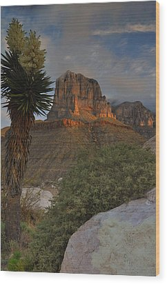 El Capitan At Sunrise Wood Print