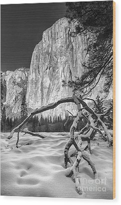 El Capitan I Wood Print by Michele Steffey