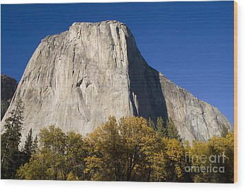Wood Print featuring the photograph El Capitan In Yosemite National Park by David Millenheft