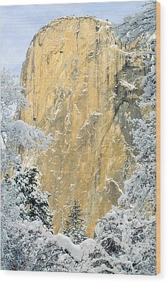 Wood Print featuring the photograph El Capitan With Snowy Trees by Judi Baker