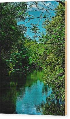 Wood Print featuring the photograph El Dorado Park Lake View by Joseph Hollingsworth
