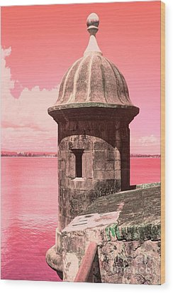 El Morro In The Pink Wood Print