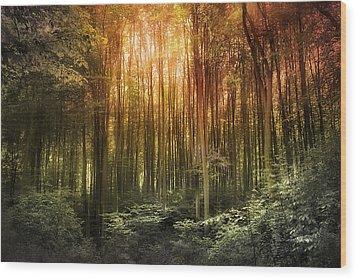 El Paradiso Mio - Awakening Spiritual Landscape Wood Print