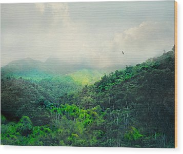 El Yunque National Rain Forest Wood Print