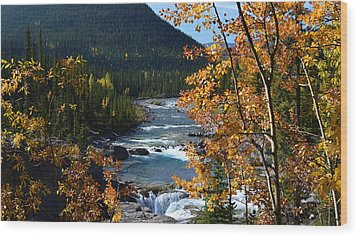 Elbow River View Wood Print by Cheryl Miller