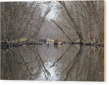Eldon's Reflection Wood Print by Bruce Patrick Smith