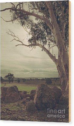 Eldorado Gumtree Wood Print