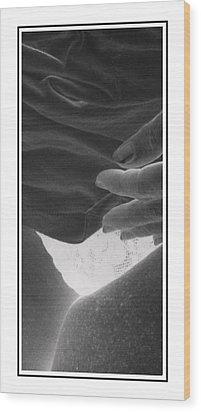 Electra Wood Print
