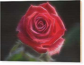 Electric Rose Wood Print by Ronald T Williams