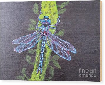 Wood Print featuring the painting Electrified Blue Dragonfly by Kimberlee Baxter