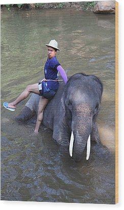 Elephant Baths - Maesa Elephant Camp - Chiang Mai Thailand - 011316 Wood Print by DC Photographer