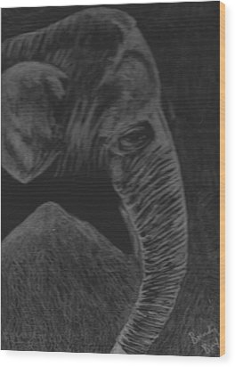 Elephant Wood Print by Brenda Bonfield