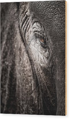 Elephant Eye Verical Wood Print