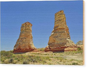 Elephant Feet Rocks Arizona Wood Print by Christine Till