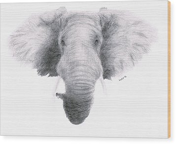 Elephant Wood Print by Lucy D