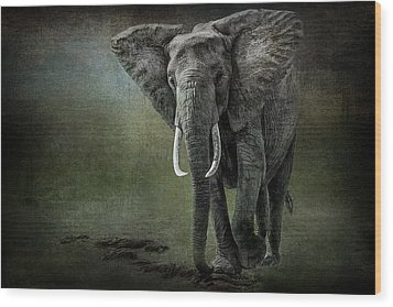 Elephant On The Rocks Wood Print