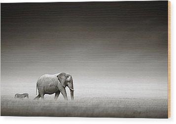Elephant With Zebra Wood Print