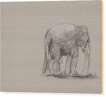 Elephant Charcoal Study #1 Wood Print