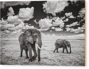 Elephants And Clouds Wood Print
