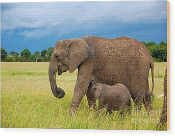 Elephants In Masai Mara Wood Print