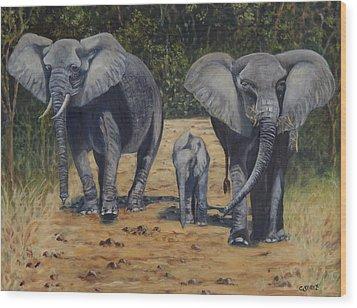 Elephants With Calf Wood Print by Caroline Street