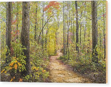 Elfin Forest Wood Print by Debra and Dave Vanderlaan