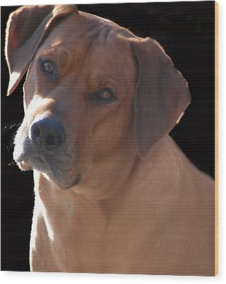 Wood Print featuring the photograph Eli by Mim White