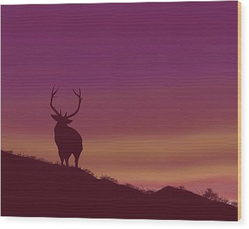 Elk At Dusk Wood Print by Terry Frederick