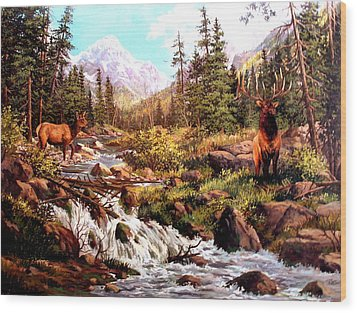 Elk Meadows Wood Print by W  Scott Fenton