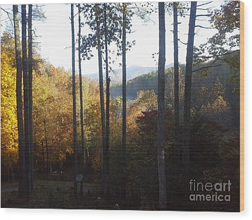 Wood Print featuring the painting Ellijay Color by Jan Dappen