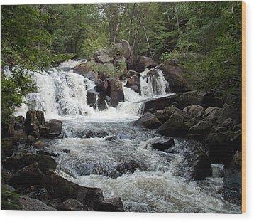 Ellis Falls In Maine Wood Print by Catherine Gagne