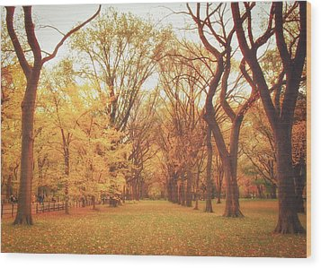 Elm Trees - Autumn - Central Park Wood Print by Vivienne Gucwa