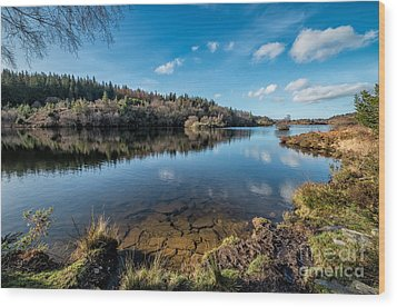 Elsi Reservoir Wood Print by Adrian Evans