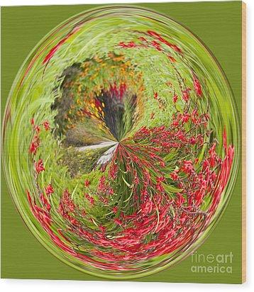 Emberglow Orb Wood Print by Anne Gilbert