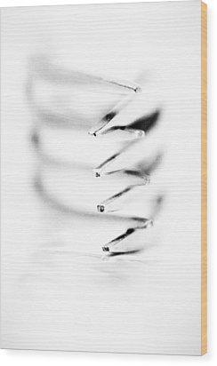 Embrace II Wood Print by Wade Brooks