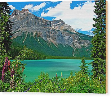 Emerald Lake In Yoho Np-bc Wood Print by Ruth Hager