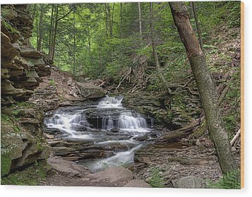 Emerald Leaves Over Seneca Falls Wood Print by Gene Walls