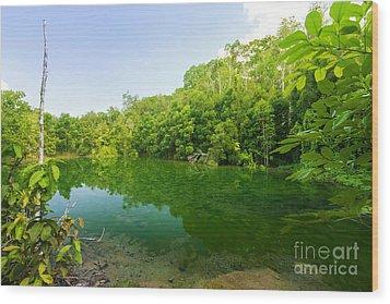 Emerald Pool Wood Print by Atiketta Sangasaeng