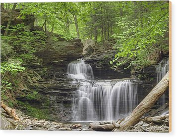 Wood Print featuring the photograph Emerald Trees Surround R. B. Ricketts Falls by Gene Walls