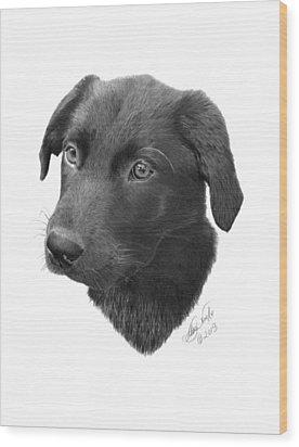 Emmy - 019 Wood Print by Abbey Noelle