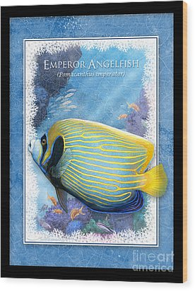 Emperor Angelfish Wood Print