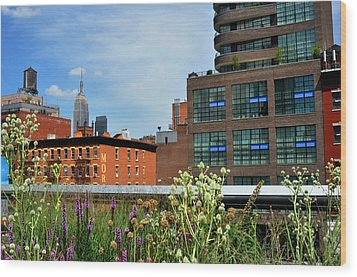 Empire State Building From The High Line Wood Print by Diane Lent