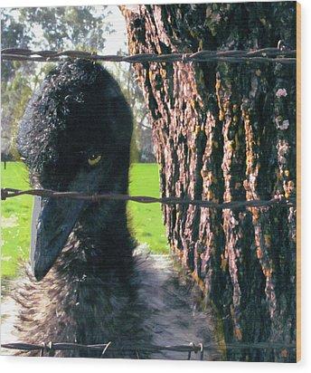 Emu Next To Tree Wood Print by Marcia Cary