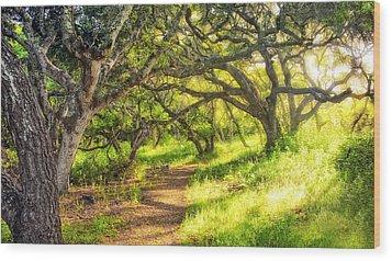 Enchanted Wood Print by Aron Kearney