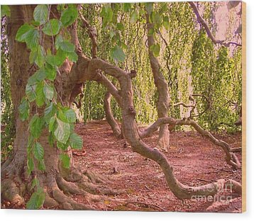 Wood Print featuring the photograph Enchanted by Becky Lupe