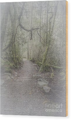 Enchanted Forest Wood Print by Elaine Teague