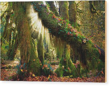 Enchanted Forest Wood Print by Inge Johnsson