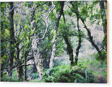 Enchanted Forest. The Kingdom Of Thetrees. Glendalough. Ireland Wood Print by Jenny Rainbow