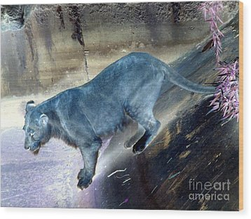 Enchanted Lioness Wood Print by Joseph Baril